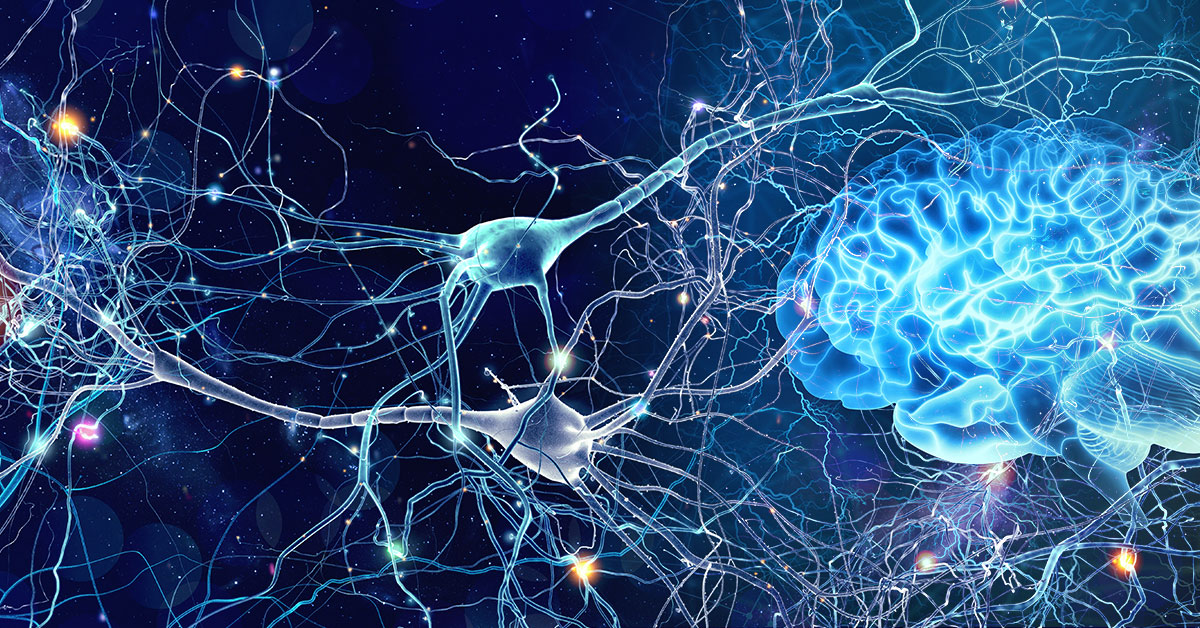 Neuroplasticity: The Best Stroke Recovery Tool